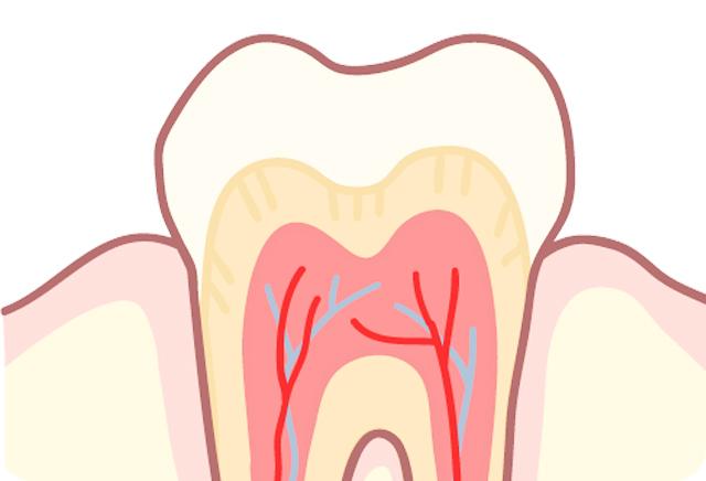 エール歯科クリニックの一般歯科